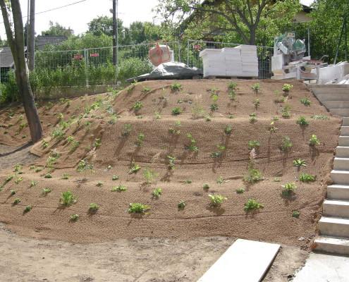 Böschungbefestigung nach der Bepflanzung