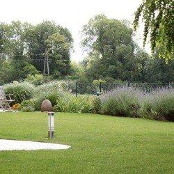 Moderne pflegeleichte Gärten mit individueller Beleuchtung