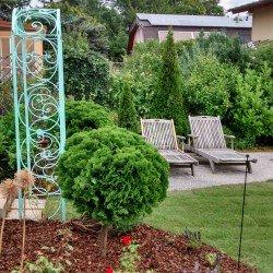 Rollrasen, Sitzplatz, Bewässerung und Rosenbogen