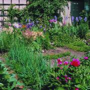 Staudenrabatte und Gemüseanbau im Innenhof