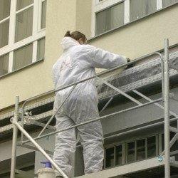 Reinigung und Desinfektion vor der Taubenabwehr