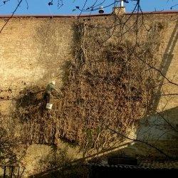 Seiltechnik an der Fassade