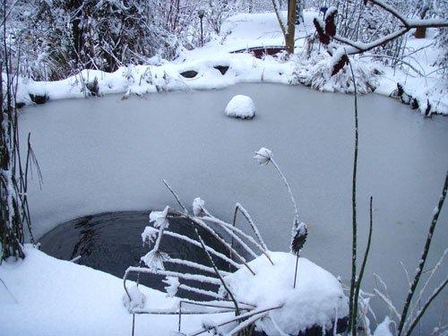 Klinkergarten naturgarten ecowork for Goldfische gartenteich winter