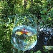 Überdimensionale Glasgefäße in der Gartengestaltung