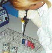 Pilzsporenanlyse PCR