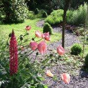Gartengestaltung für Bauerngärten