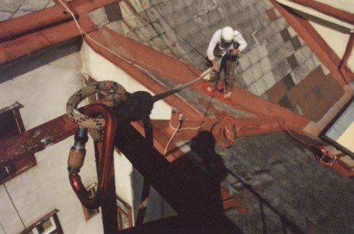 Insstriekeletterer bei der Fassadenreparatur