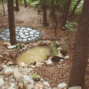 Ruhezone im Wald anlegen