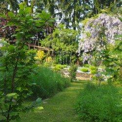 Frühling im Country Garden